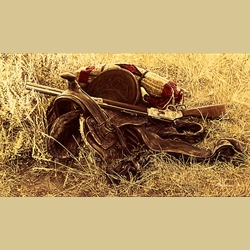 1880's Still Life of Saddle and Rifle