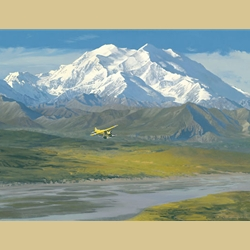 Denali Summer By William S. Phillips