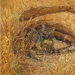 Fox Haven by Bev Doolittle