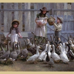 Feeding the Geese By Morgan Weistling