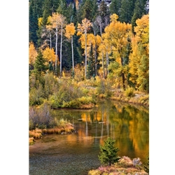 iver Reflection, Barry Bailey Photography, Landscape,  Gallery Steamboat Springs, Downtown Steamboat.   Mountain Traditions.  Aspen Photography.   Gallery Wrap.