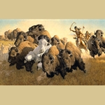 In Pursuit of the White Buffalo By Frank C. McCarthy